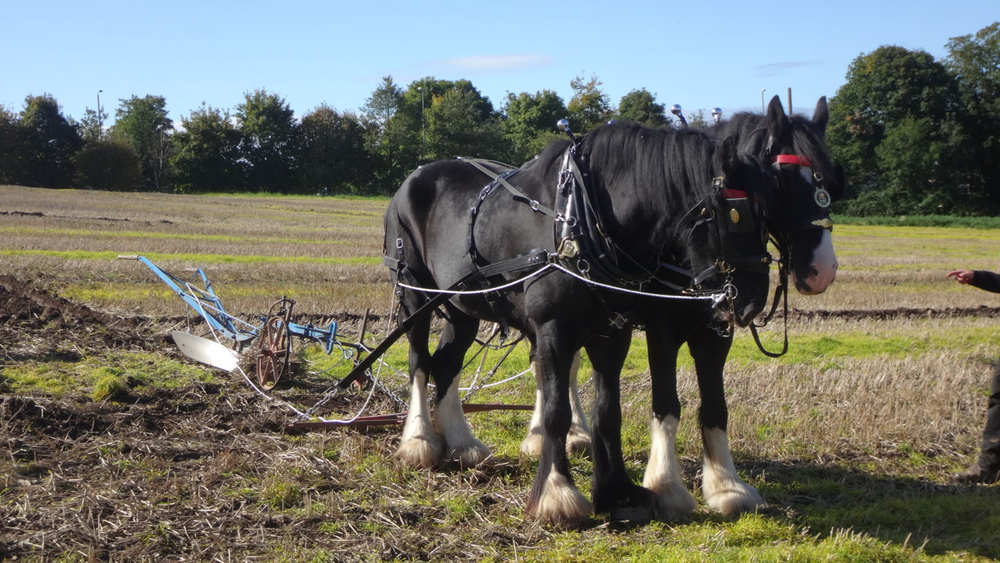 North Kent Ploughing Match – Saturday 30th September, 2017